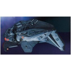 Star Trek Kazon Fighter
