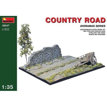 Camino Rural y Ruinas
